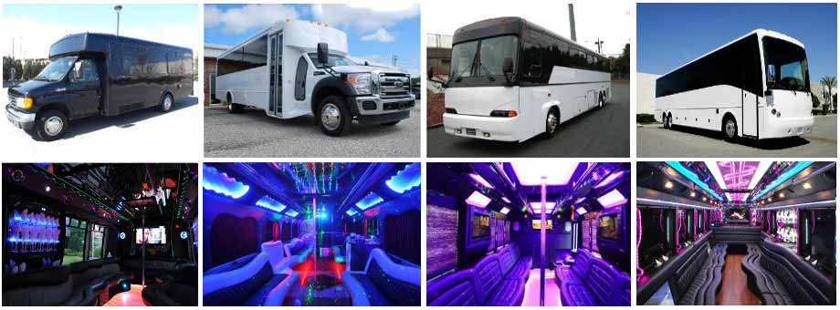 Birthday Transportation Party buses